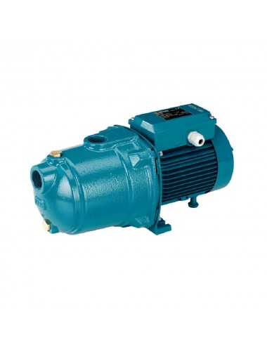 Pompa multistadio Hp 1,00 MGPM205 Calpeda 230/50Hz corpo in ghisa
