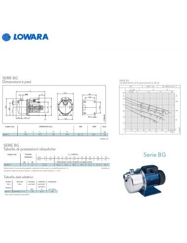 Pompa autodescante Lowara centrifuga monofase HP 1,5 KW 1,1 serie BGM11