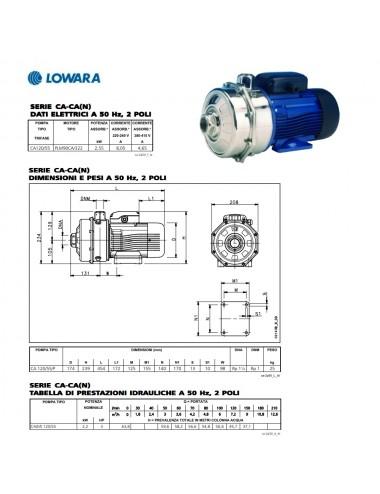 Pompa superfice Lowara centrifuga bigirante trifase HP 3 KW 2,2 serie CA120/55/D