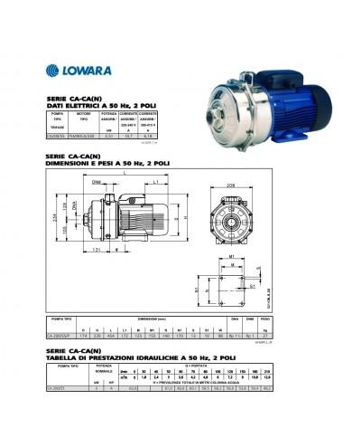 POMPA SUPERFICE LOWARA CENTRIFUGA BIGIRANTE TRIFASE HP 4 KW 3 SERIE CA200 55 D